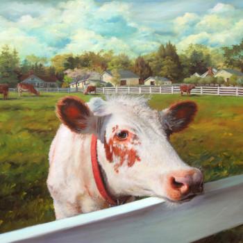 Sadie, NEW POND FARM COW