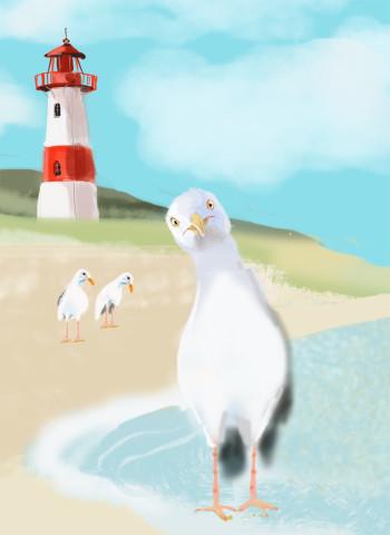 Funny Gull