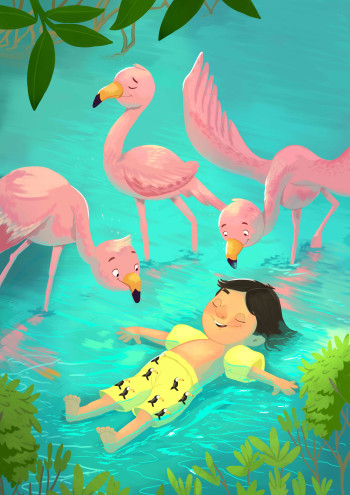 Swimming with Flamingos