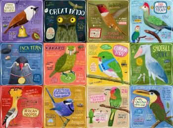 Bird's Eye Puzzle