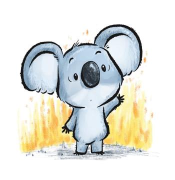 Koala in Trouble