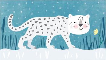 Animals-Snow Leopard