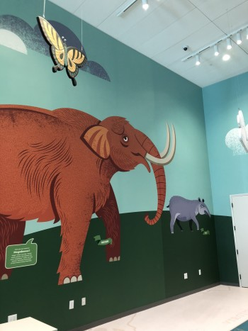 Mastodon- Tennessee State Museum, Children's wing interior