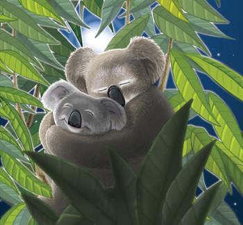 Koala Bear Hug