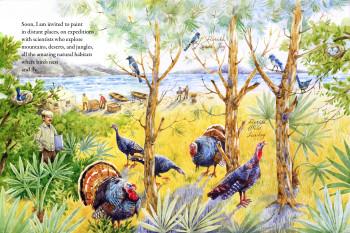 'The Sky Painter: Louis Fuertes, Bird Artist', Florida