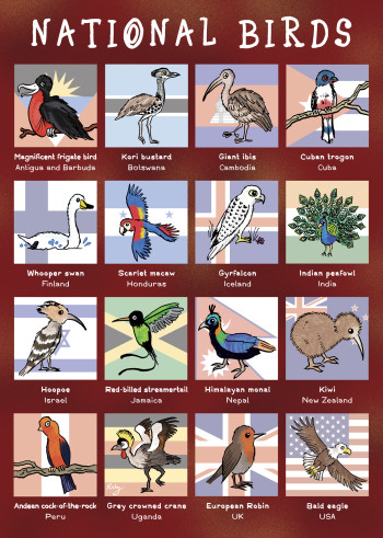 """National Birds - from """"Eco Kids Planet"""""""