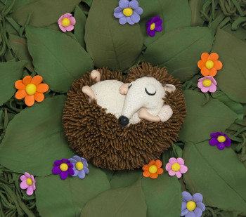 Hedgehog Nap