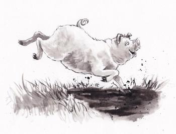 Little Piggie Big Fun