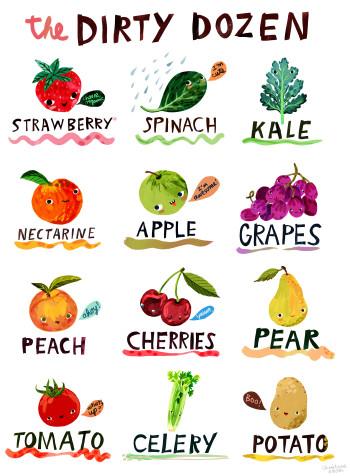 Dirty Dozen - Fruit and Veg