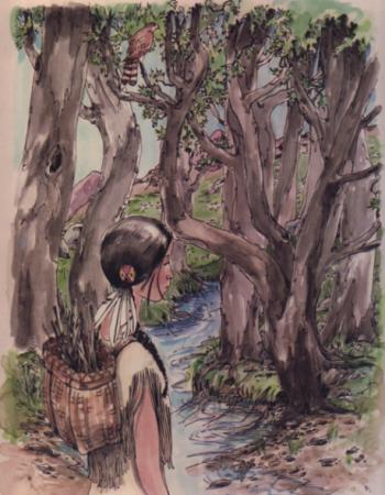 gathering twigs