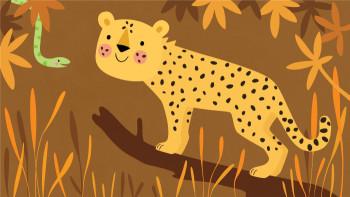 Animals-Cheetah