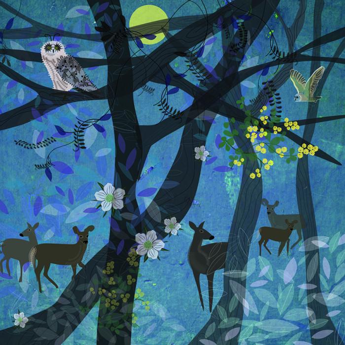 Owls and deer