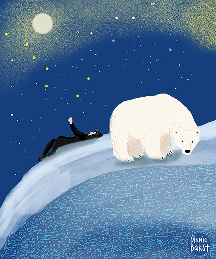Polar Bear and star searching