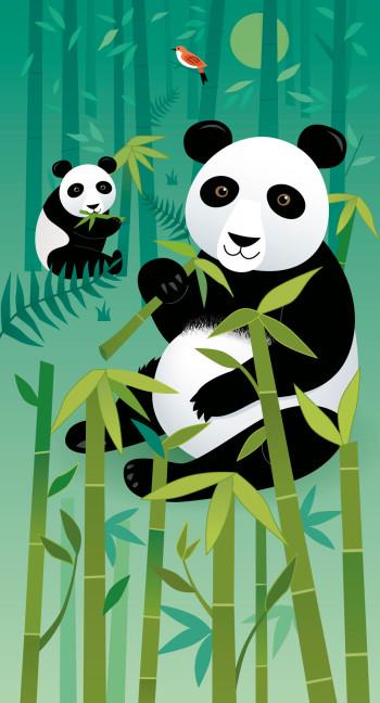 Pandas and Bamboo