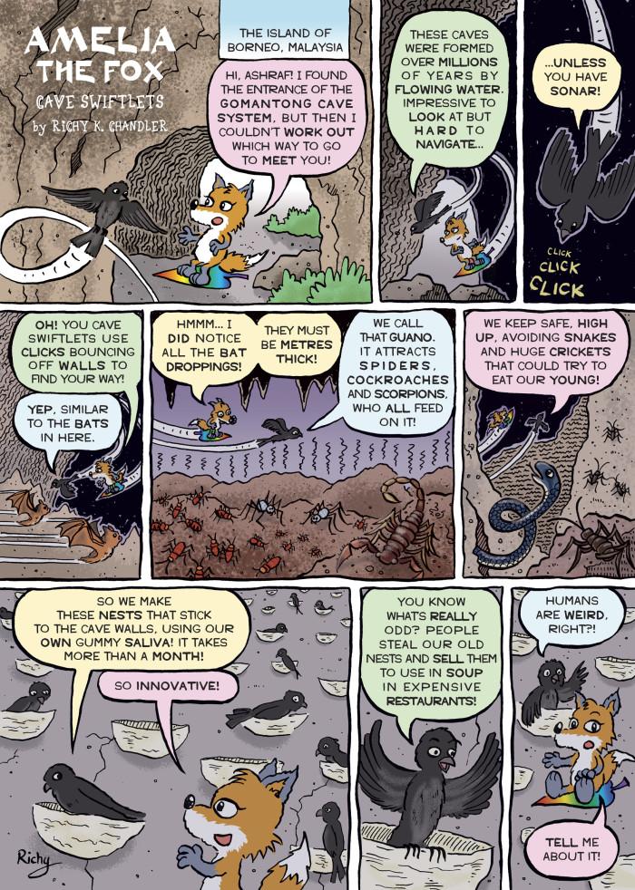 Cave creatures...