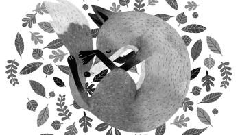 Fox & Llama