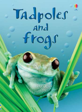 Tadpoles and Frogs - Beginners