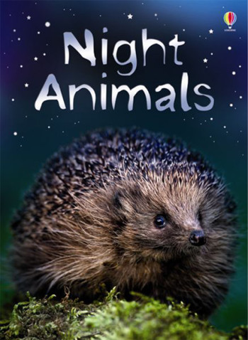 Night Animals - Beginners
