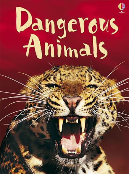 Dangerous Animals - Beginners