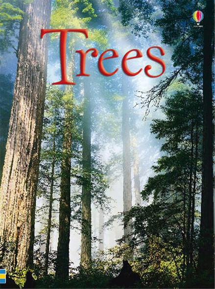 Trees - Beginners
